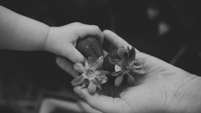 Um dedinho de prosa necessário para reconectar as coisas — Gestão de Pessoas